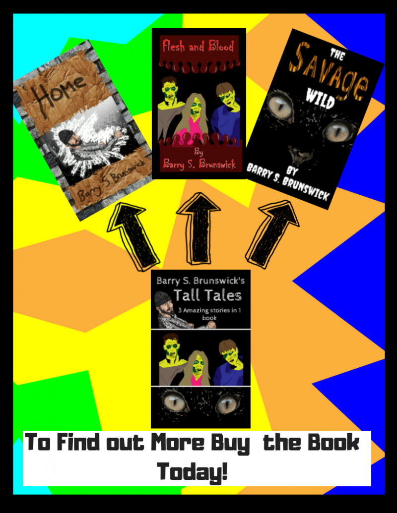 Barry-S- Brunswick-Tall-Tales-Short-Stories-Collection